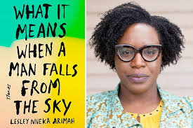 "Not Brand New, But Gripping & Impressive – A Review Of Lesley Nneka Arimah's ""What It Means When A Man Falls From The Sky"" by Jerry Chiemeke"